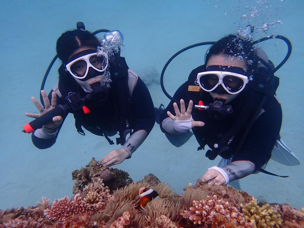 """Let's Diving!!٩( """"ω"""" )و【沖縄のマリンスポーツ専門店☆水納島マーメイド】"""